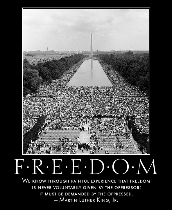 an analysis of the painful experience that freedom is never voluntarily given by the oppressor
