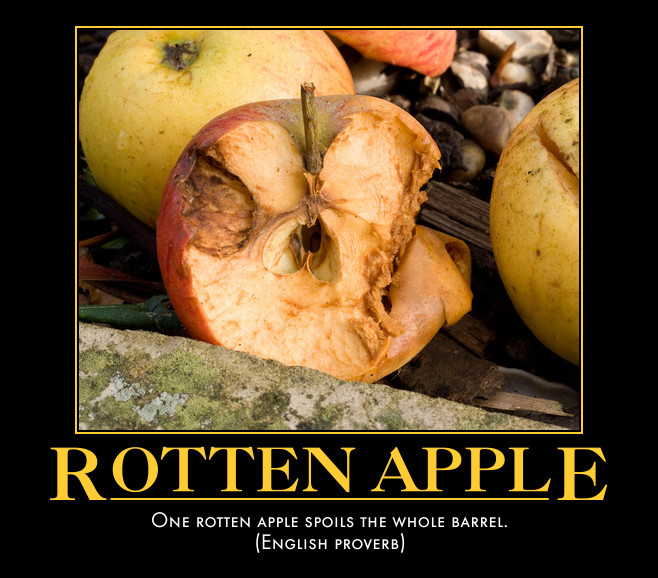 a rotten apple spoils the barrel essay Helen is the rotten apple that spoils the barrel in our office everyone sees her come in late to work and take long coffee breaks, and they think, 'why can't i do the same'  one rotten (or bad) apple spoils the barrel.
